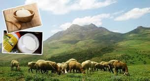 خرید روغن حیوانی گوسفندی
